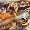 19.03.13【イベント】深海ギョッチ ~底曳網の出荷されなかった魚を眺めて食べる会~ 開催決定!